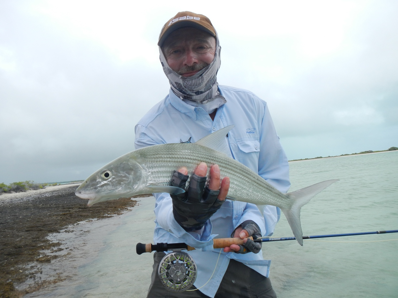 A typical Christmas bonefish - great fun, and plenty of them.